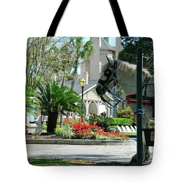 Waiting Horse Tote Bag by Bruce Gourley
