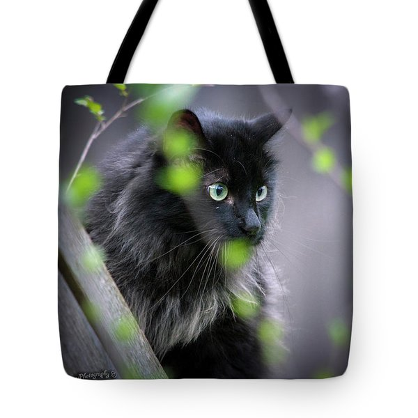 Waiting In The Wing Tote Bag