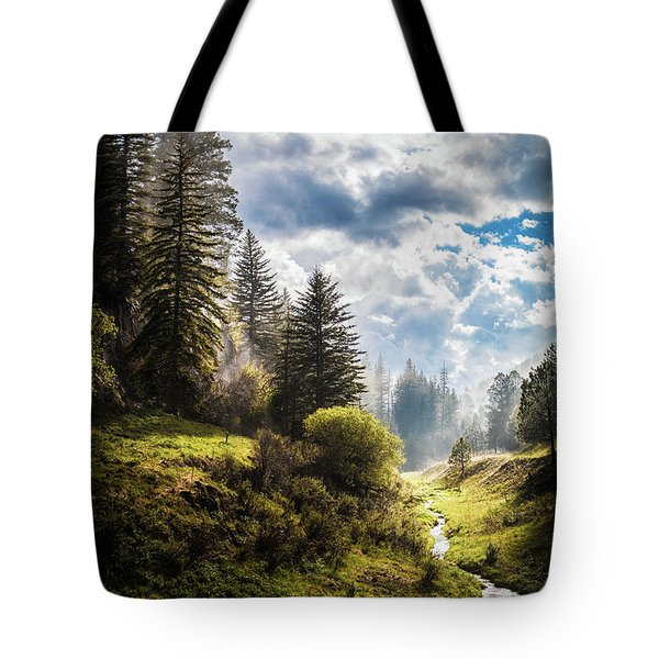 Tote Bag featuring the photograph Waiting Out The Rain by Laura Roberts