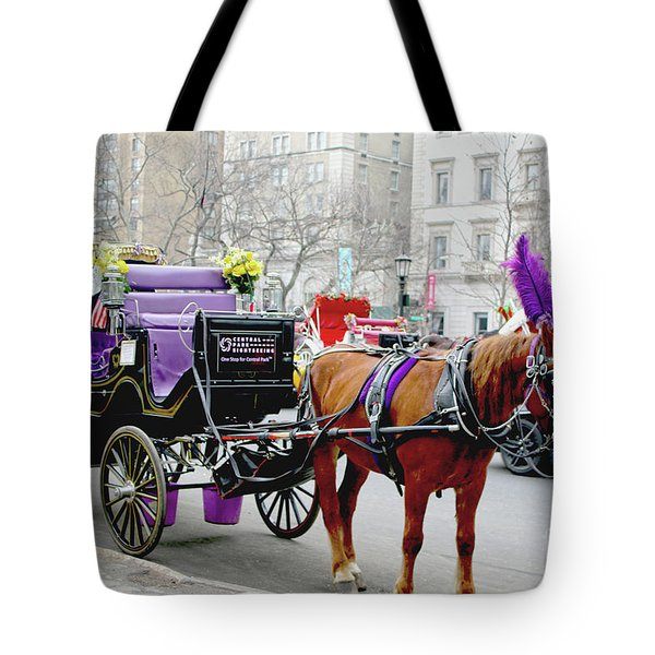 Waiting Tote Bag by Sandy Moulder
