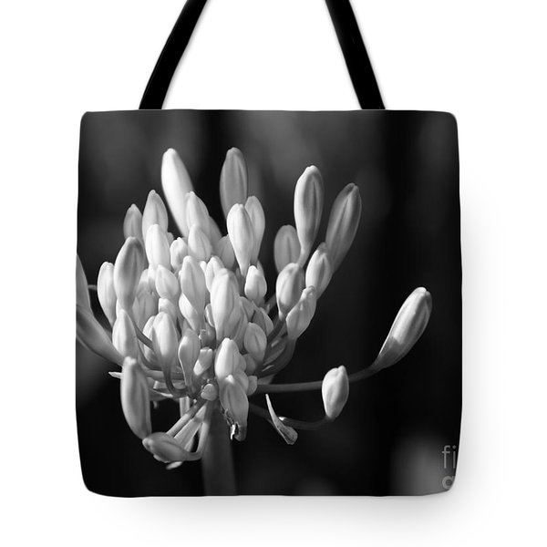 Waiting To Blossom Into Beauty - Bw Tote Bag