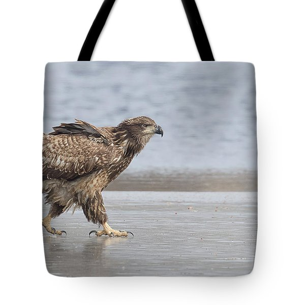 Walk Like An Eagle Tote Bag by Kelly Marquardt