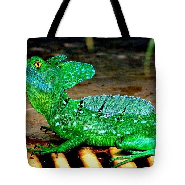 Walk On Water Tote Bag by Karen Wiles