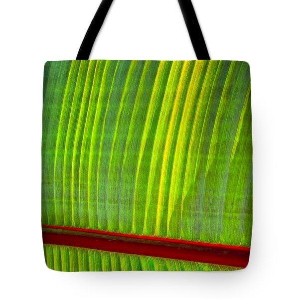 Walk The Line Tote Bag by Gwyn Newcombe