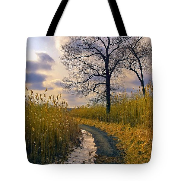 Walk With Me Tote Bag by John Rivera