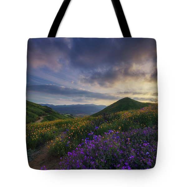 Walker Canyon Tote Bag by Tassanee Angiolillo