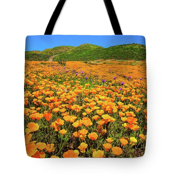 Walker Canyon Wildflowers Tote Bag by Lynn Bauer