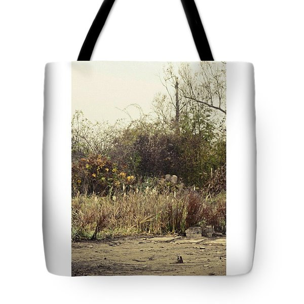 Walking By The Lake  #landscape #lake Tote Bag