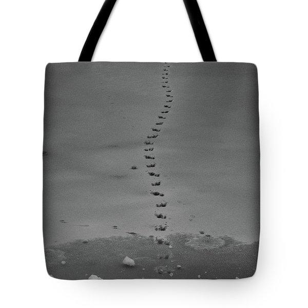 Walking On Thin Ice Tote Bag