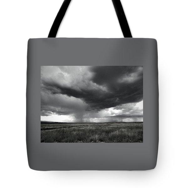 Walking Rain Tote Bag