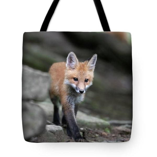 Walking The Path Tote Bag