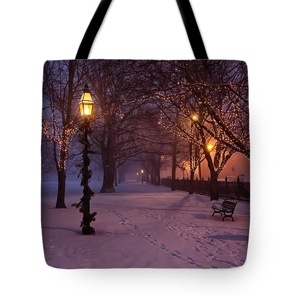 Walking The Path On Salem Common Tote Bag