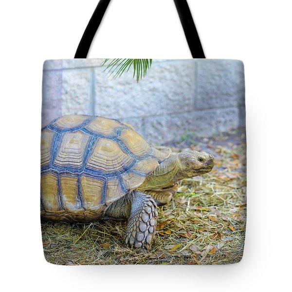 Walking Turtle Tote Bag