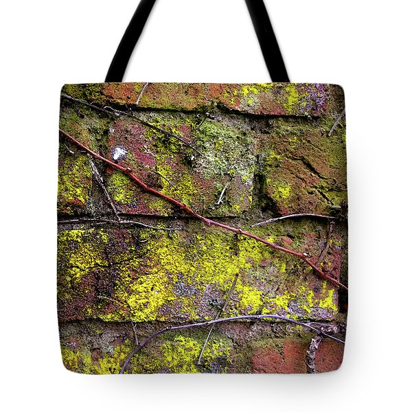 Wall Tote Bag by Anne Kotan
