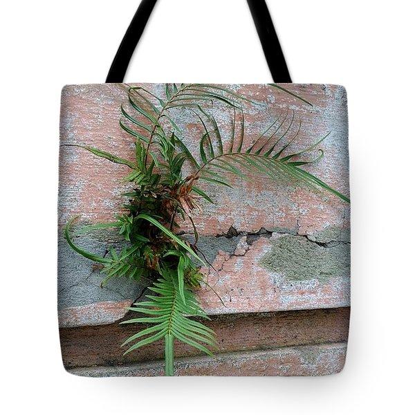 Wall Fern Tote Bag