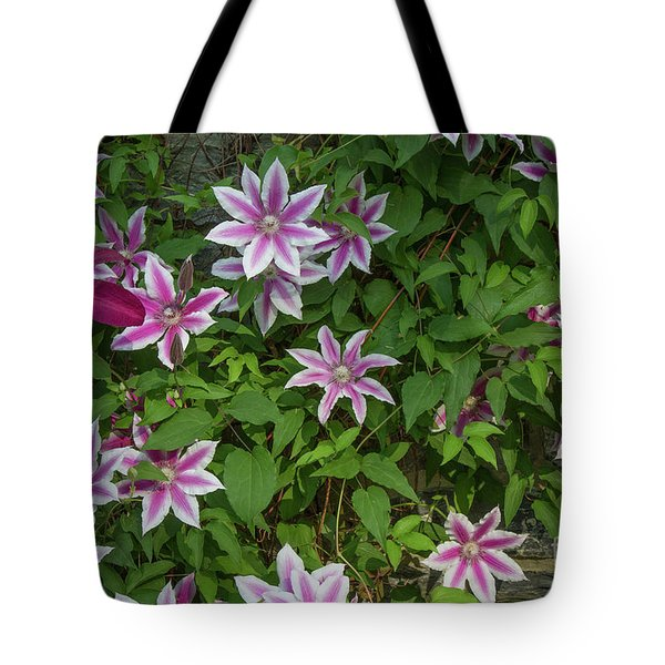 Tote Bag featuring the photograph Wall Flowers by Chris Scroggins