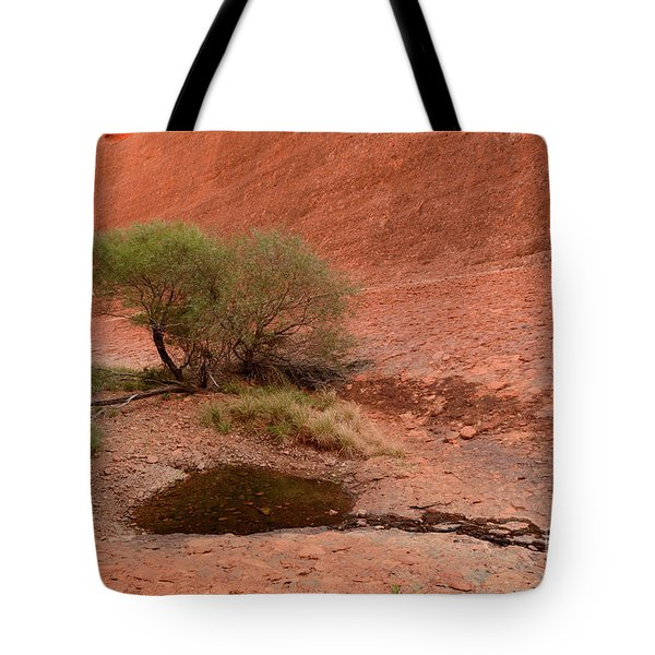 Tote Bag featuring the photograph Walpa Gorge 01 by Werner Padarin