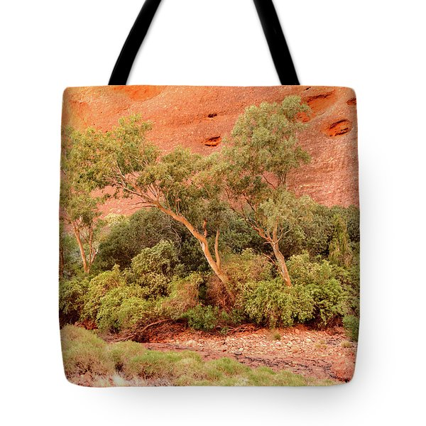 Tote Bag featuring the photograph Walpa Gorge 03 by Werner Padarin