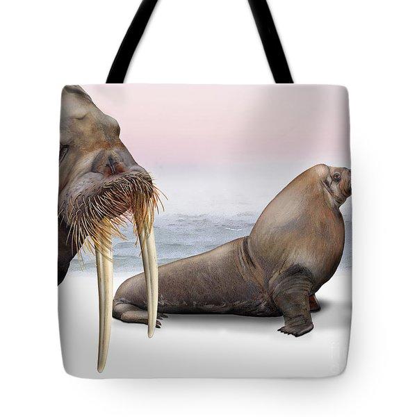 Walrus Odobenus Rosmarus - Morse - Morsa - Tricheco - Mursu - Rostungur - Ivory Tusks - Inuit Tote Bag