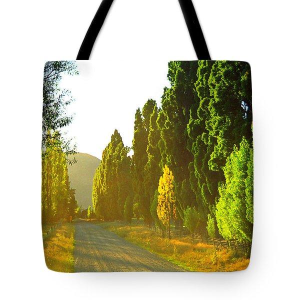 Wanaka Morning Light Tote Bag by Kevin Smith