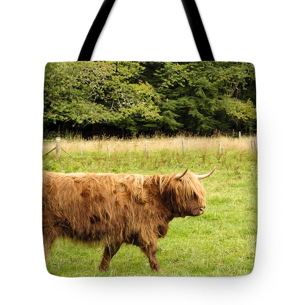 Tote Bag featuring the photograph Wandering Coo by Christi Kraft