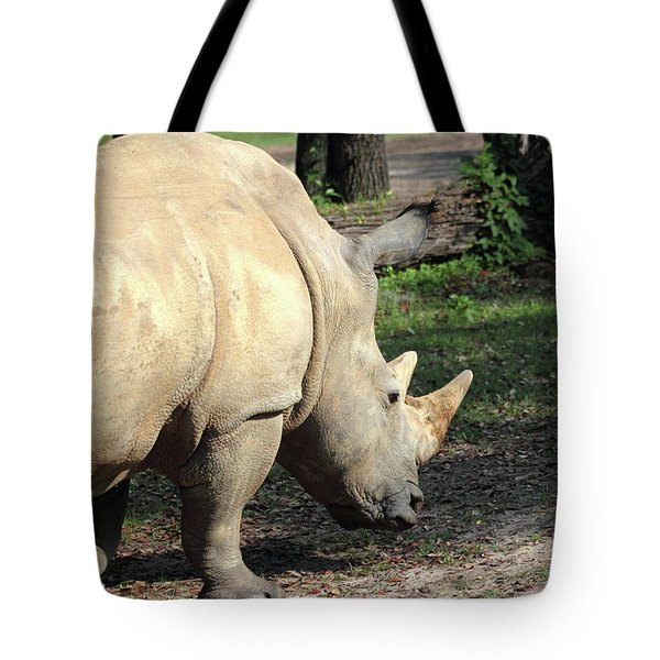 Wandering Rhino Tote Bag by Mary Haber