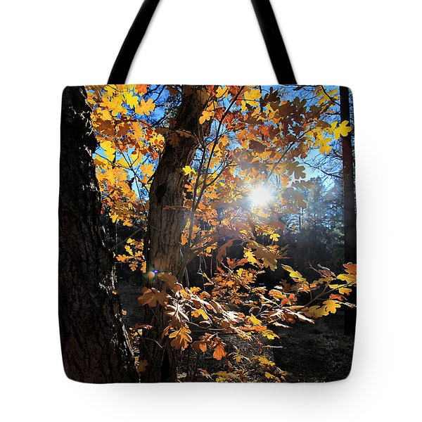 Waning Autumn Tote Bag