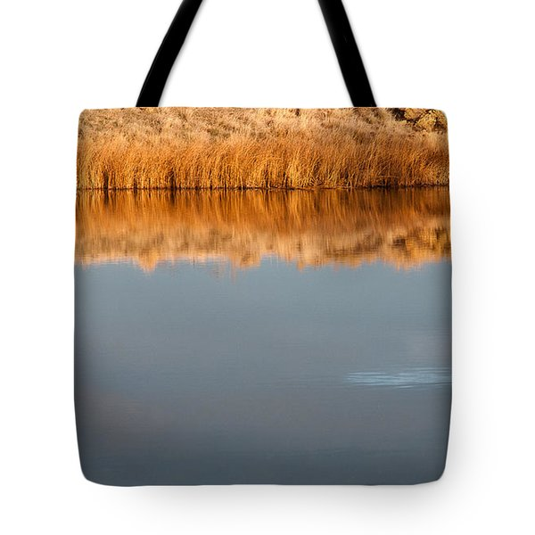 Tote Bag featuring the photograph Warm Afternoon Glow by Monte Stevens