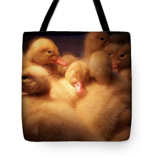 Warm And Fuzzy Tote Bag by Robert Orinski