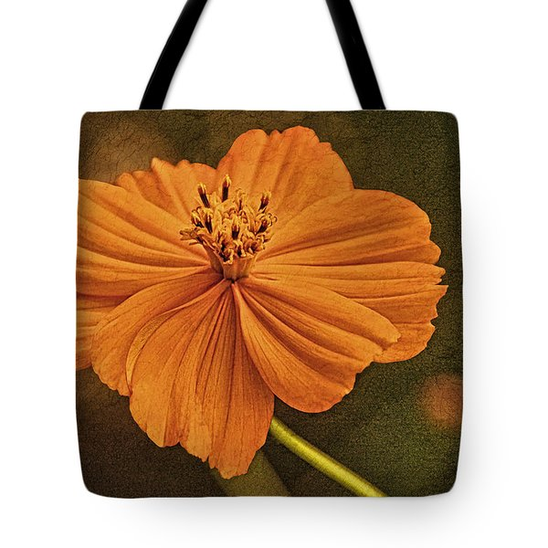 Warm Glow Of Summer Tote Bag