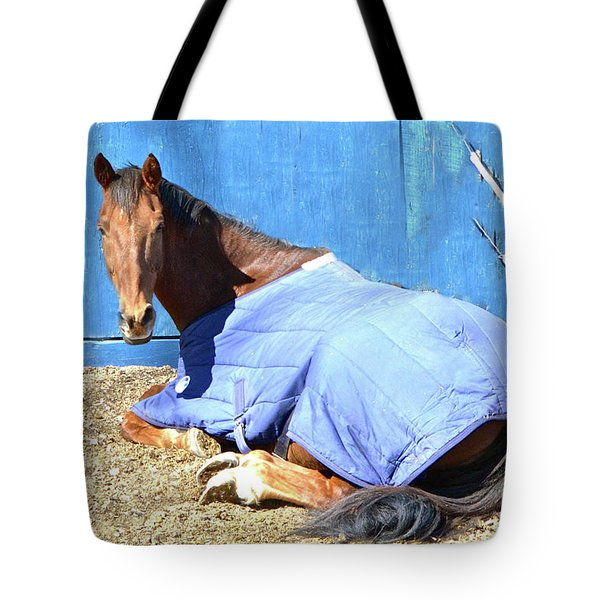Warm Winter Day At The Horse Barn Tote Bag