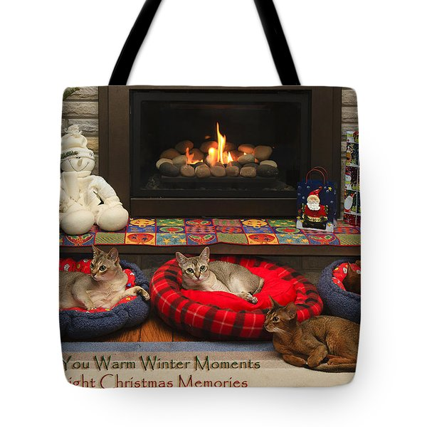 Warm Winter Moments Tote Bag by Gary Hall