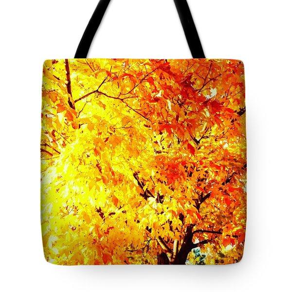Warmth Of Fall Tote Bag