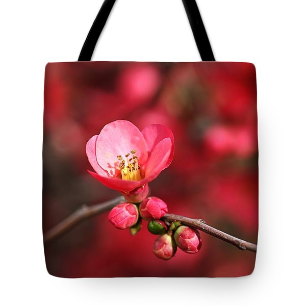 Warmth Of Flowering Quince Tote Bag