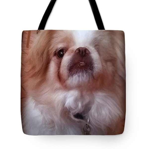 Tote Bag featuring the photograph Wasabi The Wonder Dog by Roger Bester