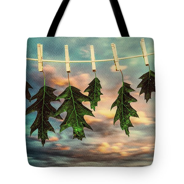 Wash Day Tote Bag by Bob Orsillo