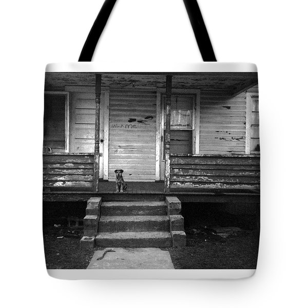 Tote Bag featuring the photograph Wash Me by Steve Godleski