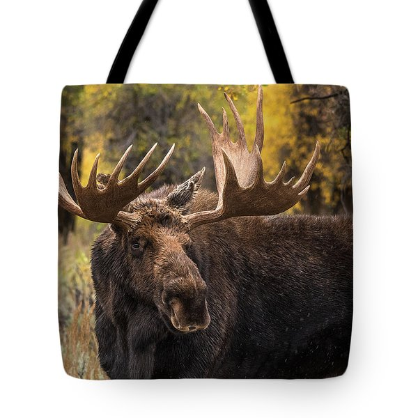 Washakie In The Autumn Beauty Tote Bag