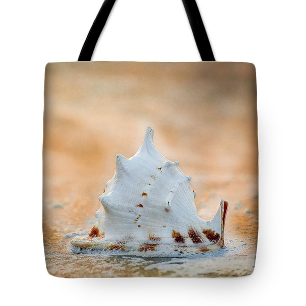 Tote Bag featuring the photograph Washed Up by Sebastian Musial