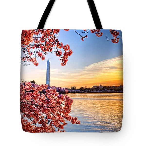 Washington Cherry Tree Sunrise Tote Bag
