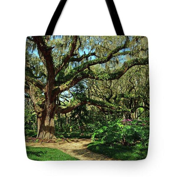 Washington Oaks Gardens Tote Bag