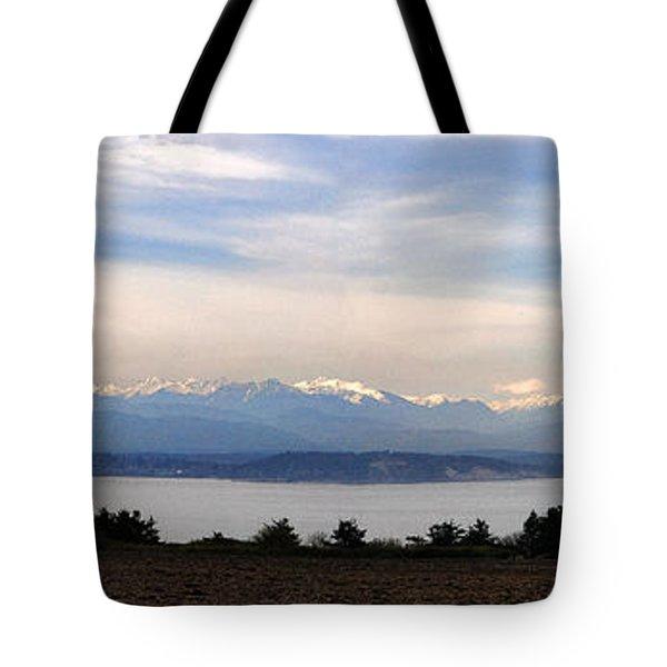 Washington Panorama Tote Bag