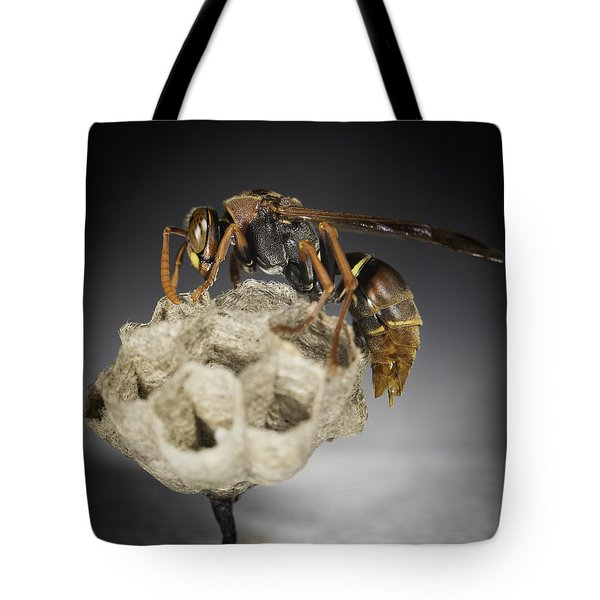 Wasp On A Nest Tote Bag