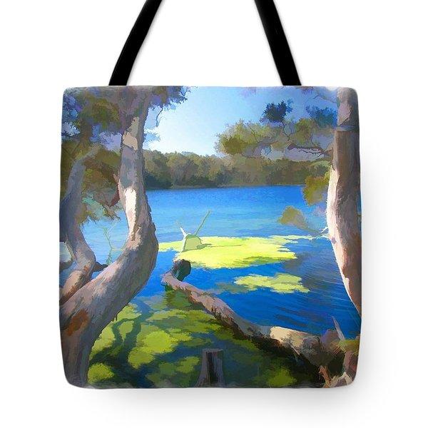 Wat-0002 Avoca Estuary Tote Bag