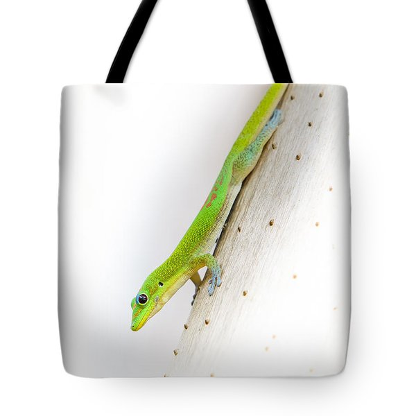 Watch Out Ants...here I Come Tote Bag