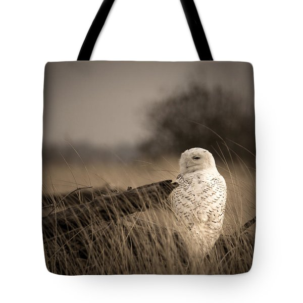 Tote Bag featuring the photograph Watch Owl by Erin Kohlenberg