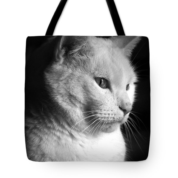 Watchful Tote Bag by Bob Orsillo