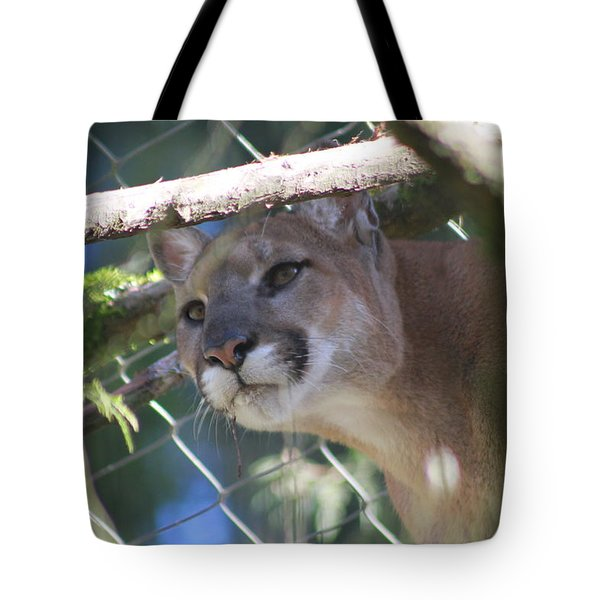Tote Bag featuring the photograph Watchful Eyes by Laddie Halupa