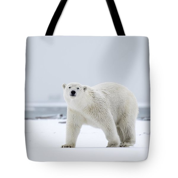 Watchful In The Arctic Tote Bag