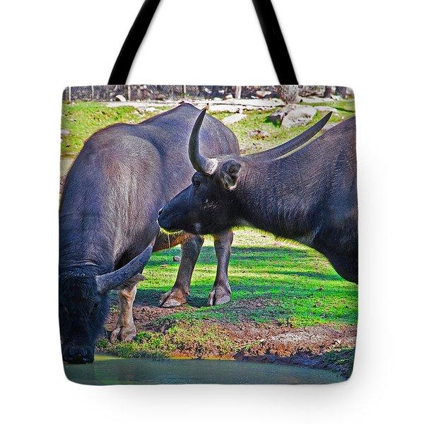 Watching 2 Water Buffalos 1 Water Buffalo Watching Me Tote Bag